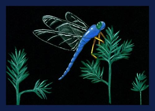 Watercolor and gouache original dragonfly painting by Joana Miranda