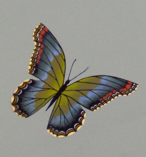 Photo of painted blue butterfly from the ceiling of Jane's Carousel in Brooklyn, NY, taken by Joana Miranda