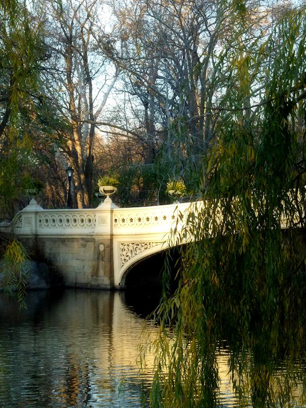Photo of Bow Bridge in Central Park, taken by Joana Miranda