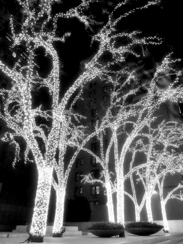 Black and white photo of trees in Manhattan lit up for the holidays, taken by Joana Miranda