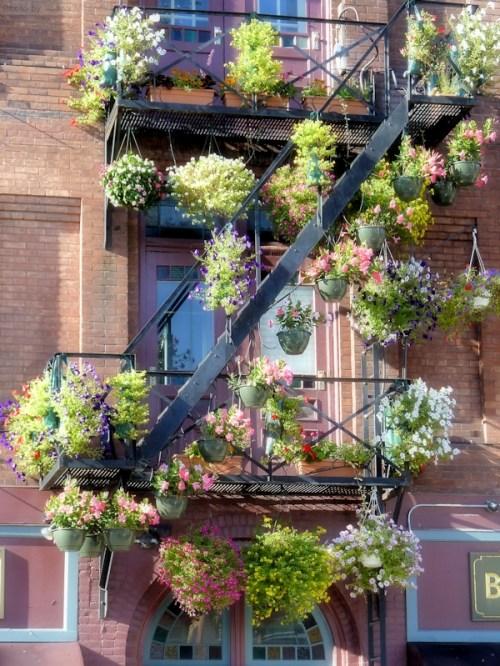 multiple hanging flower baskets