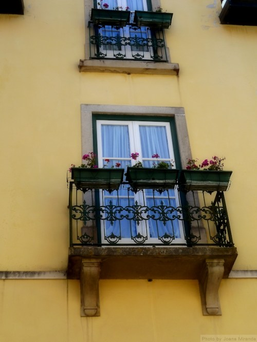 flower boxes against yellow house in Sintra