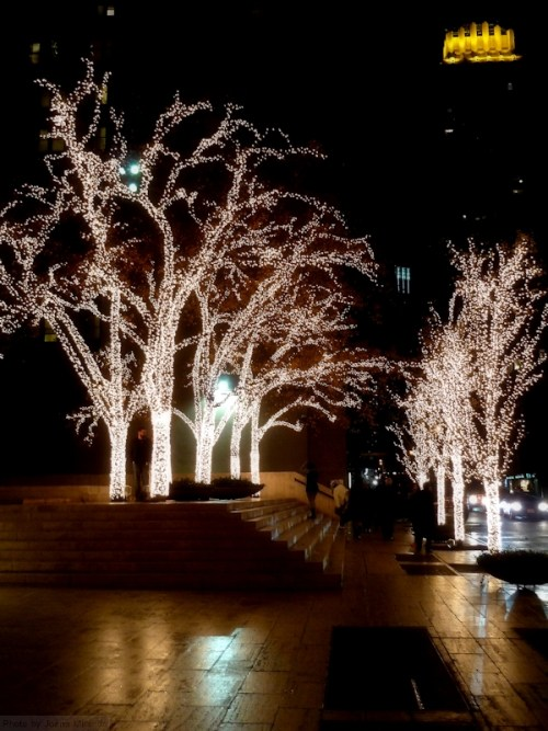 Holiday Lights in Midtown