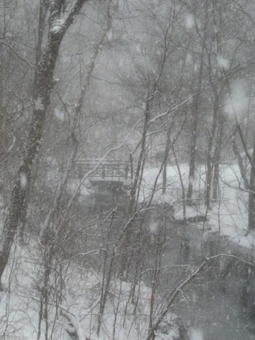 Snowy scene over bridge in Central Park