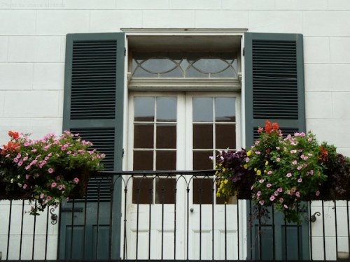 Window and flower boxes in New Orleans