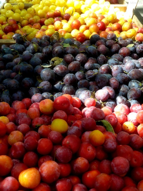 plums at the farmers market2