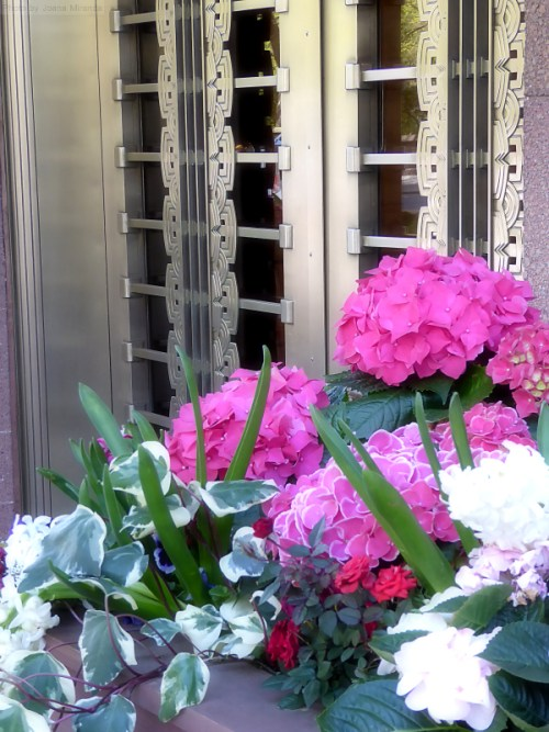 Pretty flower box against Art Deco door