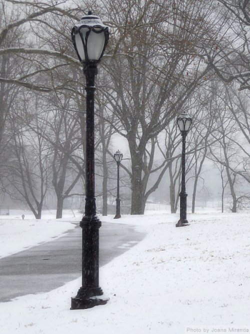 snow-falling-in-central-park