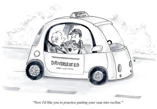 Drivers Ed cartoon by Joana Miranda