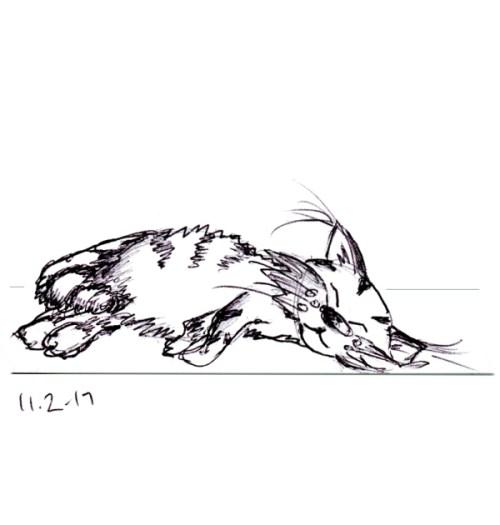 Quick ballpoint pen sketch of cartoon cat asleep on a sofa by Joana Miranda