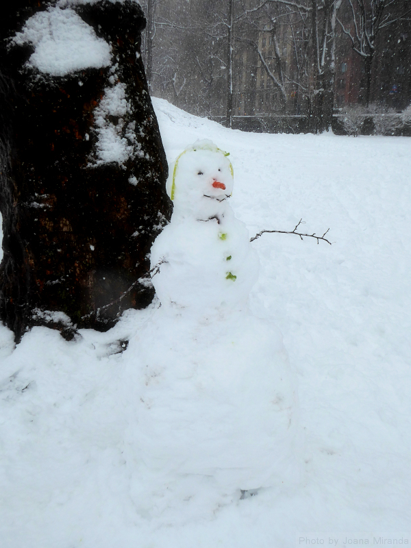 Carrot nose snowman in Central Park