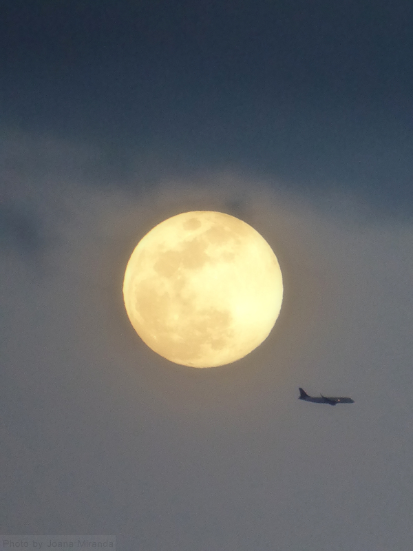 Moonrise and plane