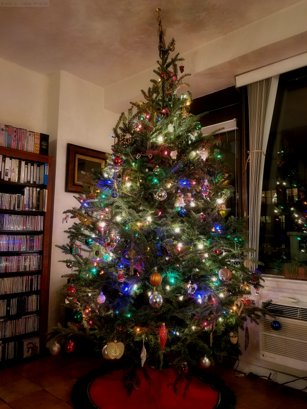 Our Christmas Tree 2018