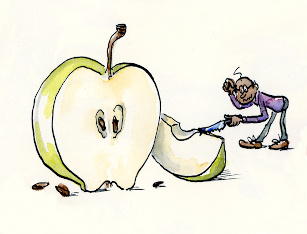 Johnny Appleseed at work? Humorous cartoon illustration by Joana Miranda