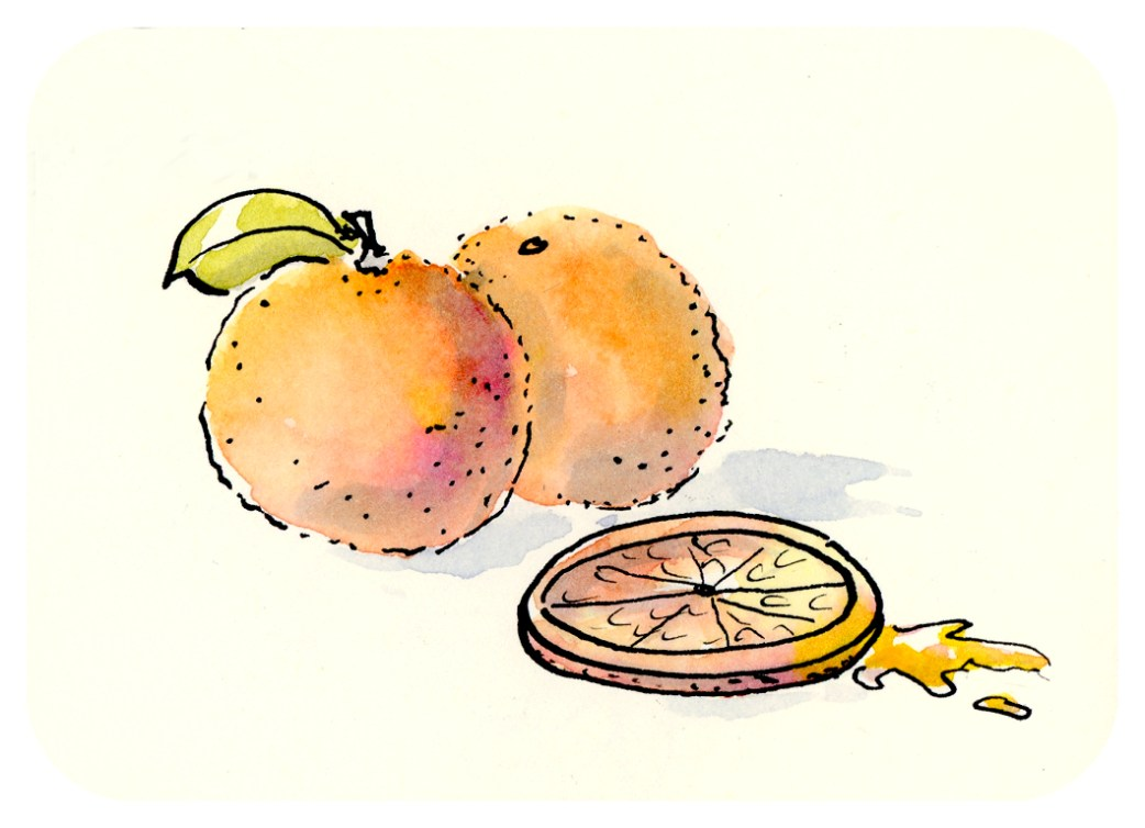 Adventures in Watercolor - Three Oranges by Joana Miranda