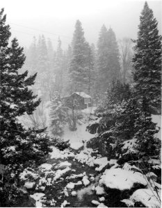 1988001008 Ouray Cabin, CO 1988