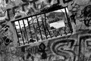 1992002008 Graffiti House, CA 1992