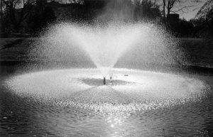 1998057009 UNM Fountain 1998