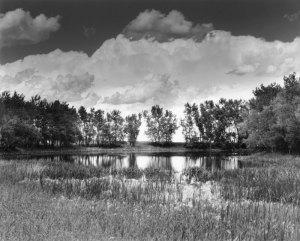 2008F03004 Ft. Pierre Grasslands, SD 2008