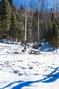 20180056DC Winter Picnic, NM 2018