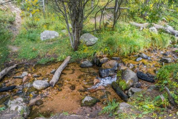 20190033DC Mountain Stream, NM 2019
