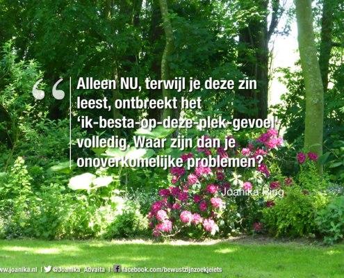 quote van Joanika over problemen