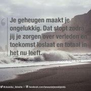 quote van Joanika over geheugen