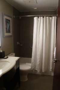 Sheraton Brooklyn Bathroom