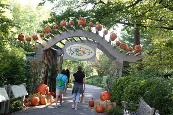 Fall in NYC - Everett Children's Adventure Garden in Pumpkins: Playful & Plentiful