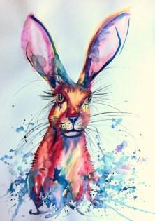 colourful hare