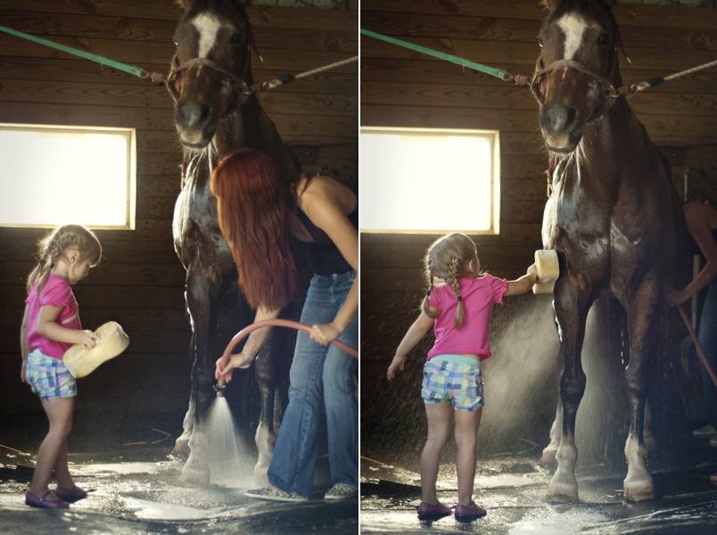 girls giving horse a bath