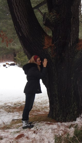 Tree Hugger - I tried it and felt the energy from the old tree