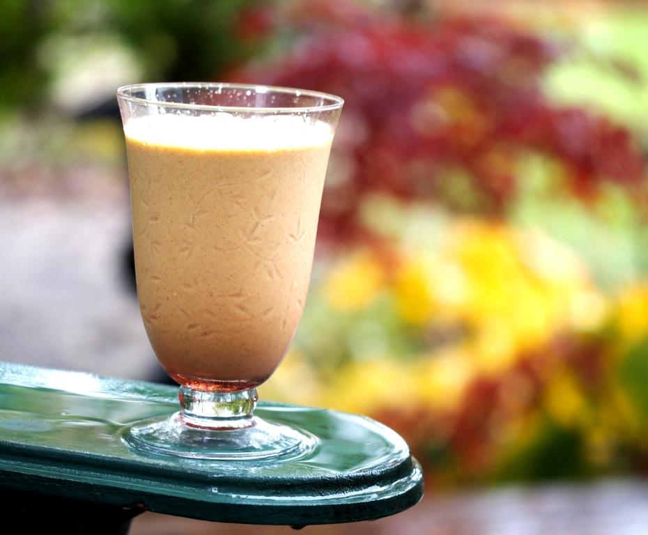 Organic Pumpkin Spice Smoothie Copyright Jo-Ann Blondin