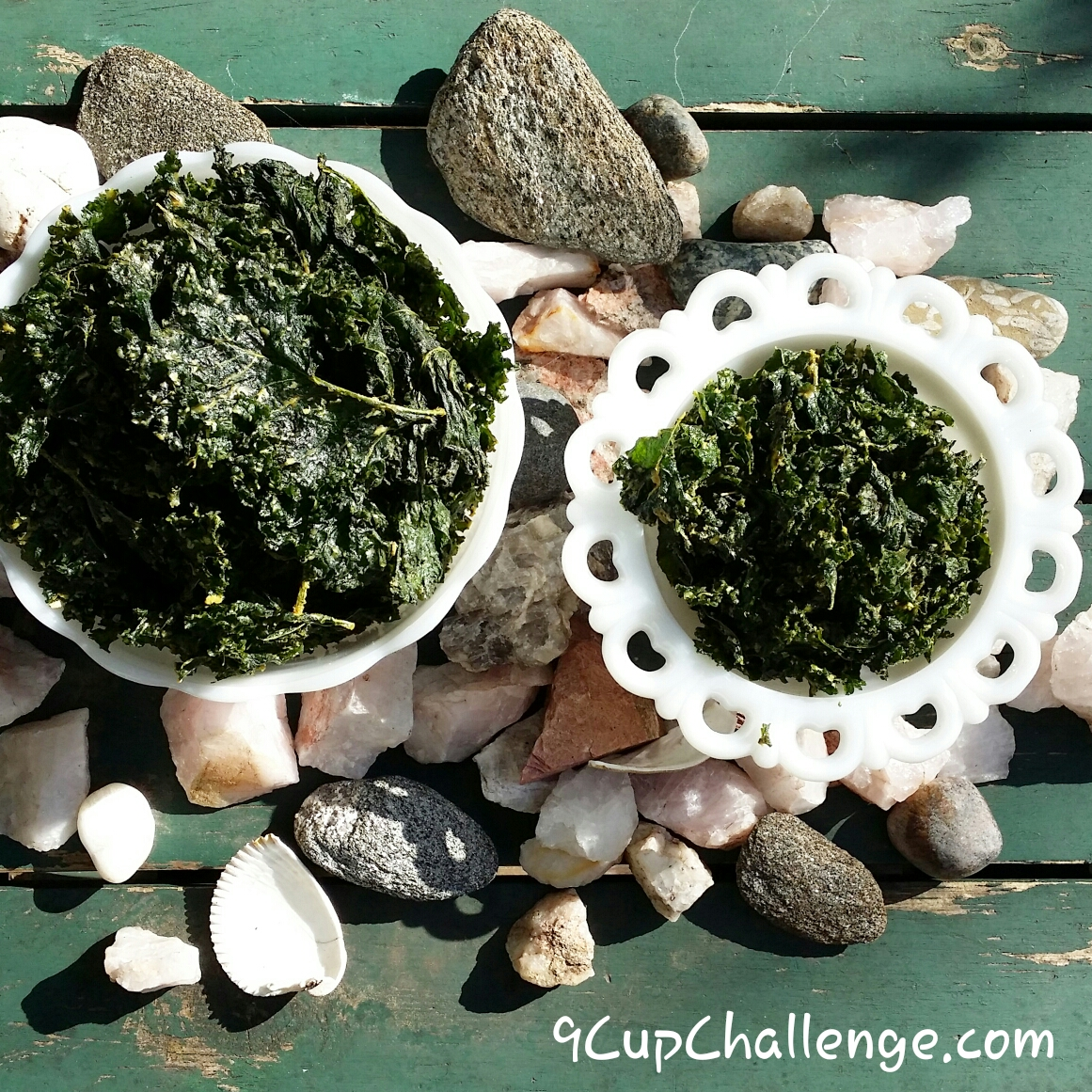 Krazy For Kale Chips – Light On The Heat