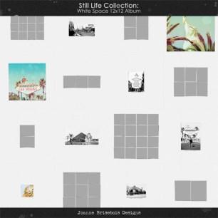 JBriseboisSLCWN12AlbumPack600