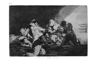 Goya-Guerra_(26)