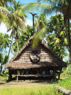 mens_house_in_tambunum_village_sepik_river_papua_new_guinea_rear_view