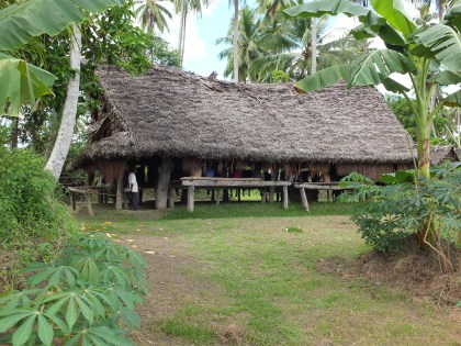 mens_house_in_tambunum_village_sepik_river_papua_new_guinea_side_view