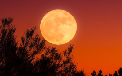 Don't Tell Me the Moon is Shining: A Golden Rule of Writing for Aspiring Authors