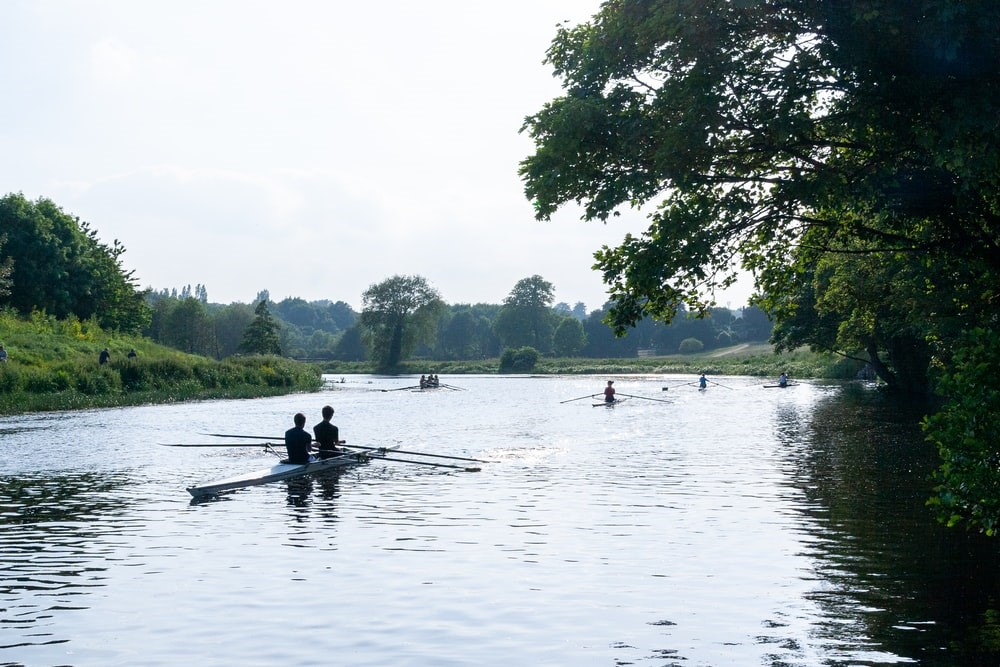Rowers rowing on the river