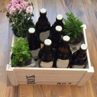 Holzkiste mit Bierflaschen und Pflanzen bestückt - einfaches Männer-Geschenk