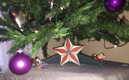 Stern aus Beton unter Weihnachtsbaum als DIY Weihnachtsdeko aus Beton