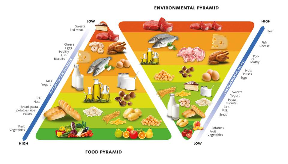Barilla's double food pyramid to avoid food waste