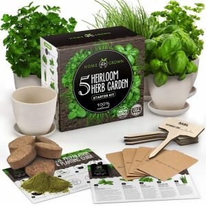 Home Grown Indoor Herb Garden Starter Kit