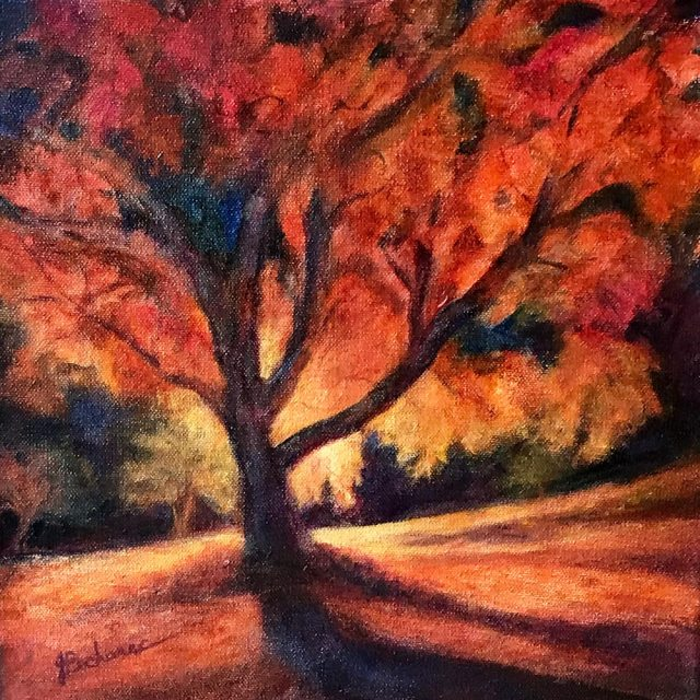 Autumn Tree, 12 x 12 original oil painting by Joan Pechanec. Available at MECA Gallery, McMinnville, OR.