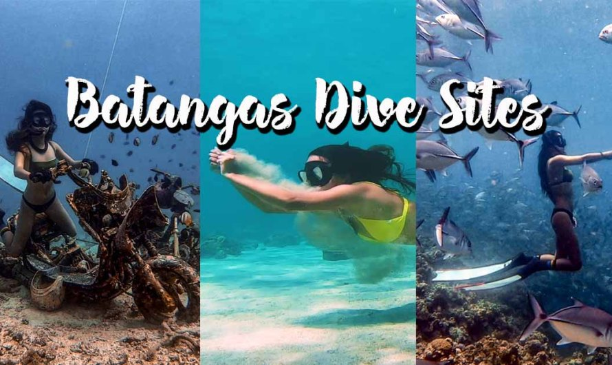 Dive Sites in Batangas (Updated as of March 2020)