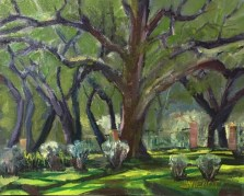 Oil painting of large live oak and light/shadow patterns on the grass underneath, at Eden Gardens State Park