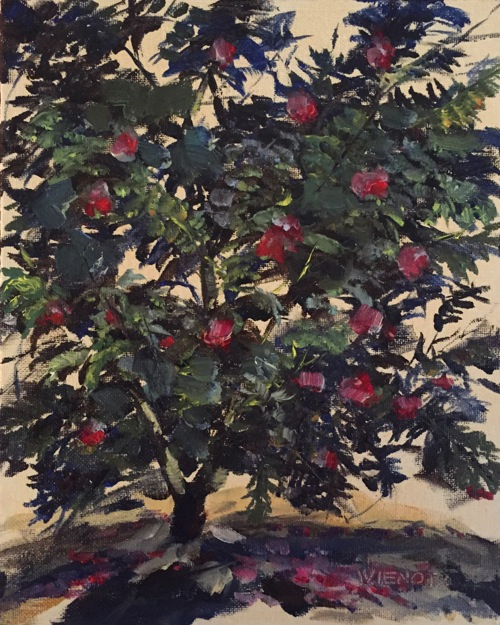 Oil painting of camellia tree in bloom at Eden Gardens State Park