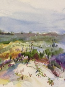 Watercolor painting of the wildflowers blooming on the dune
