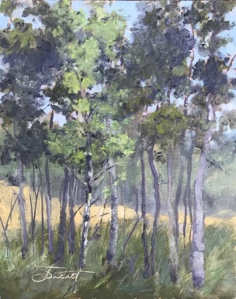 Oil painting of a grove of aspen trees near Estes Park, Colorado